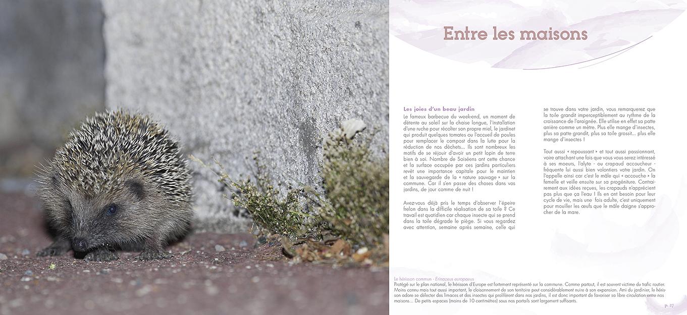 Pages du livre Entre Seine et forêt, la biodiversité de Soisy-sur-Seine