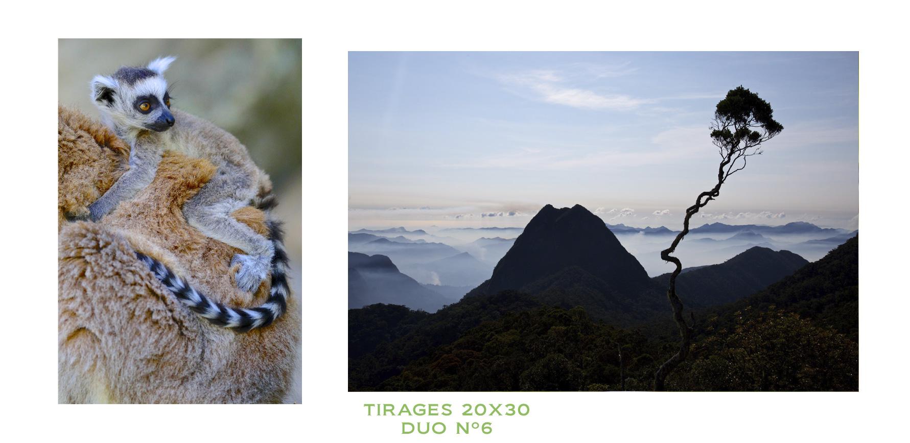 Photos tirées du livre Madagascar, un paradis aux abois