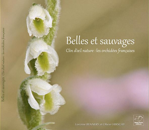 Couverture Belle et sauvages, les orchidées françaises